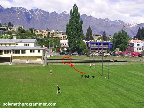 People playing frisbee in field